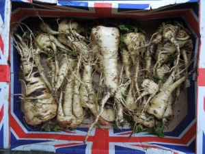 Last of the 2012 Parsnips